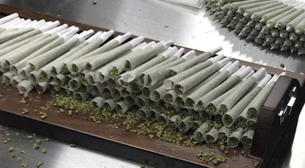 Le Nevada légalise la marijuana le 1er juillet prochain