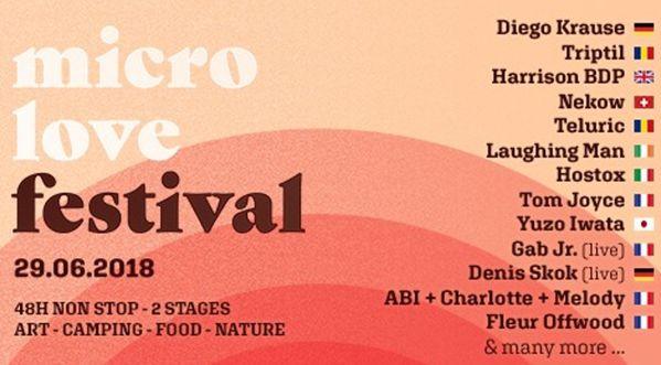 Le Micro Love Festival   48H de musique non stop