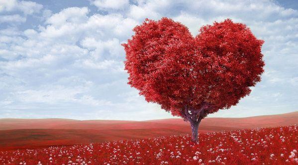 Saint-Valentin : Tinder ouvre un musée du célibat !