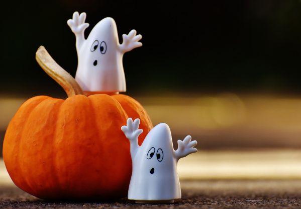 Retour sur l'incroyable histoire d'Halloween !