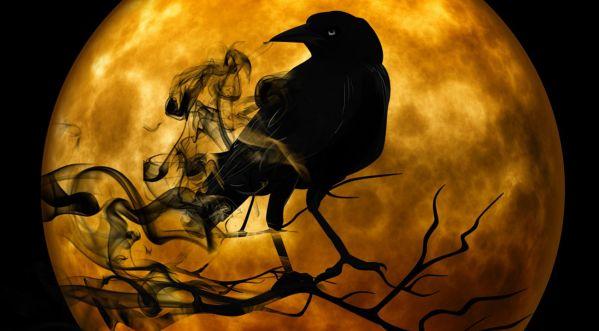 Halloween : TOP 5 des choses à connaître !
