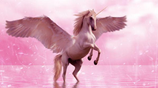 Comment organiser une fête sur le thème des Licornes ?