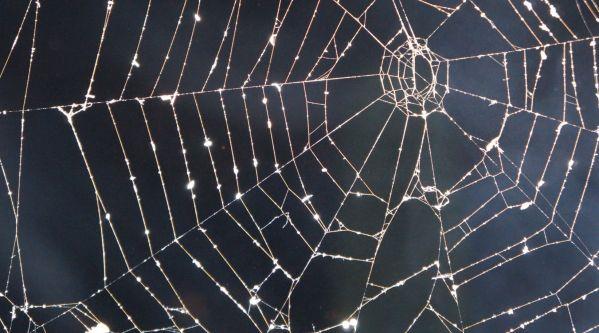 Halloween : Les Meilleurs Déguisements Pour Enfant !