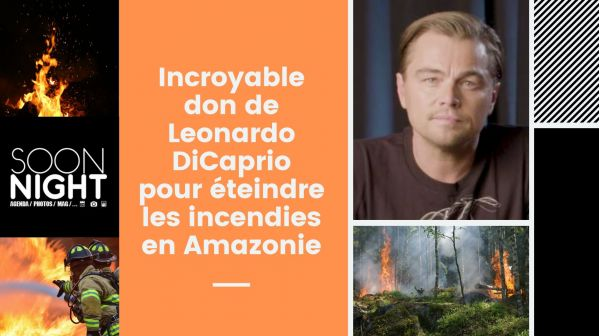L'incroyable don de Leonardo DiCaprio pour éteindre les incendies en Amazonie