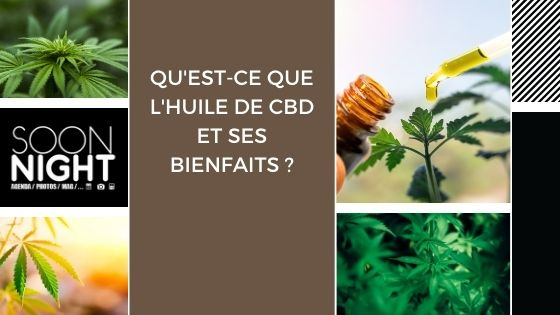 Qu'est-ce que l'huile de CBD et ses bienfaits ?
