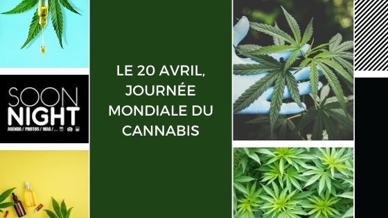 Le 20 avril, journée mondiale du cannabis