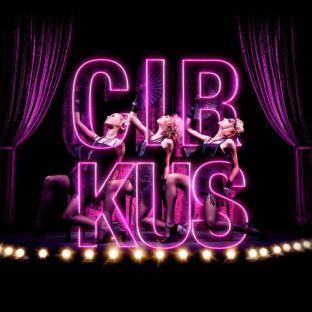 Soirée clubbing CIRKUS Samedi 20 janvier 2018