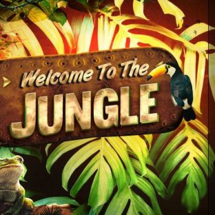 Soirée clubbing ❂ Welcome To The Jungle ❂ Samedi 27 avril 2019