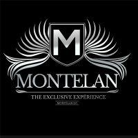 Le Montelan 2.0 Draché