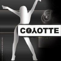 Soir�e Coyotte lundi 30 jui 2012
