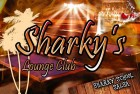 Le Sharky's Lounge La Garenne Colombes
