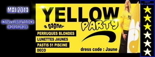 Brice de nice yellow party dress