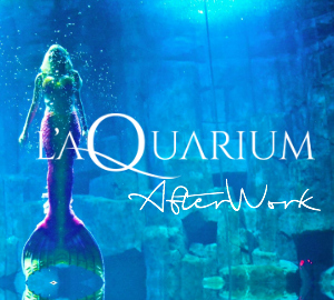 Aquarium l 39 paris annuaire loisir et guide des sorties for Aquarium de paris jardin du trocadero
