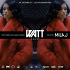 Soirée clubbing WATT  ** We are the trend**  Samedi 20 decembre 2014