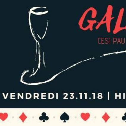 Before Gala CESI PAU Vendredi 23 Novembre 2018